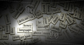 Moody lighting on magnetic word tiles, with the focus on the word 'language'