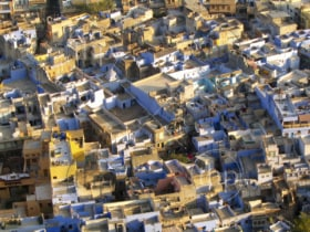 Brightly coloured rooftops and buildings in Jodhpur, India