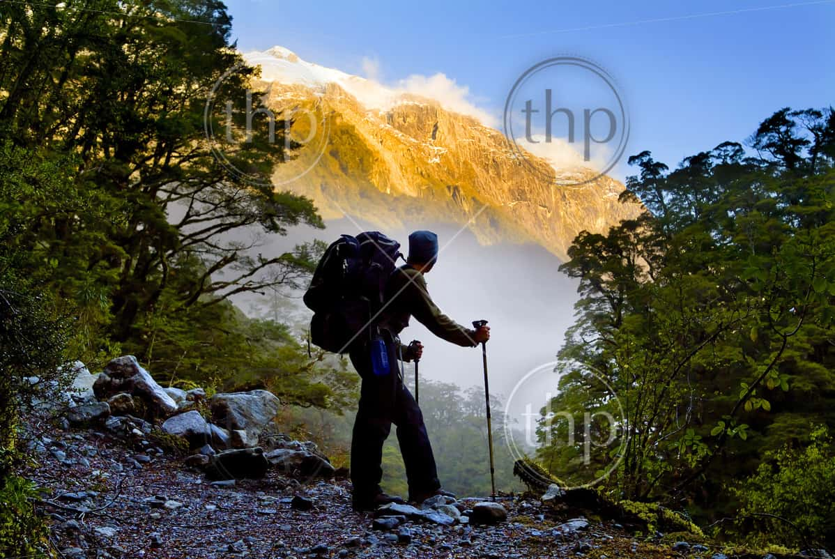 An amazing hiking experience, a hiker pauses for a rest at a clearing while ascending into the mountains of New Zealand