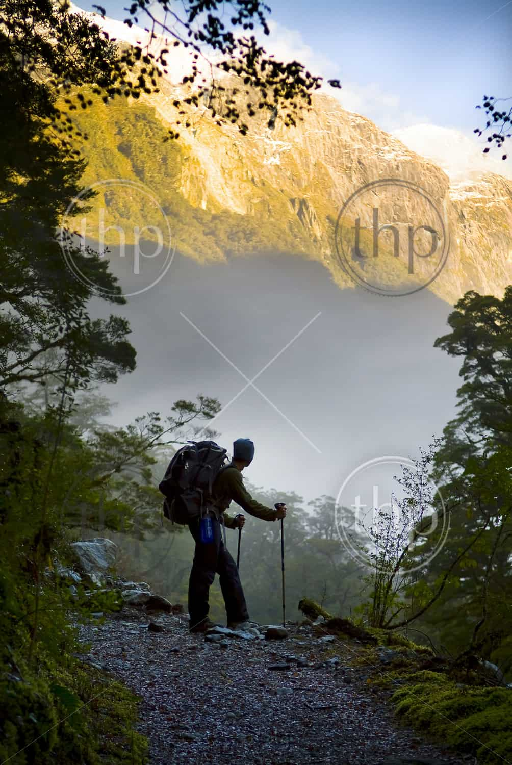 A hiker, hiking in New Zealand, pauses for a rest at a clearing with a view of the ascending mountains ahead