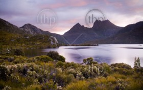 The iconic image of Tasmania, Cradle Mountain sits majestic atop the the jewel that is Dove Lake bathed in glowing sunset light