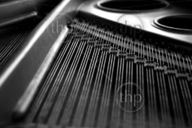 Artistic detail of grand piano strings