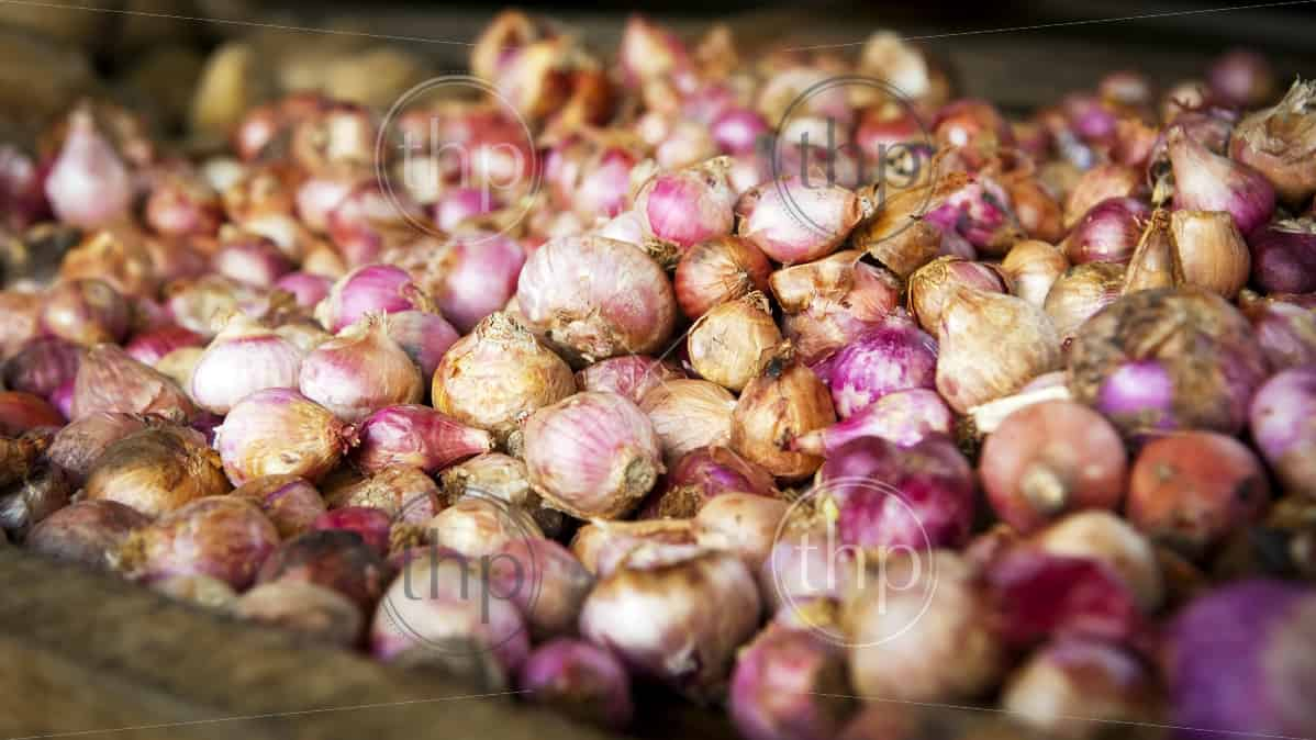 Beautiful fresh garlic on sale at a market stall