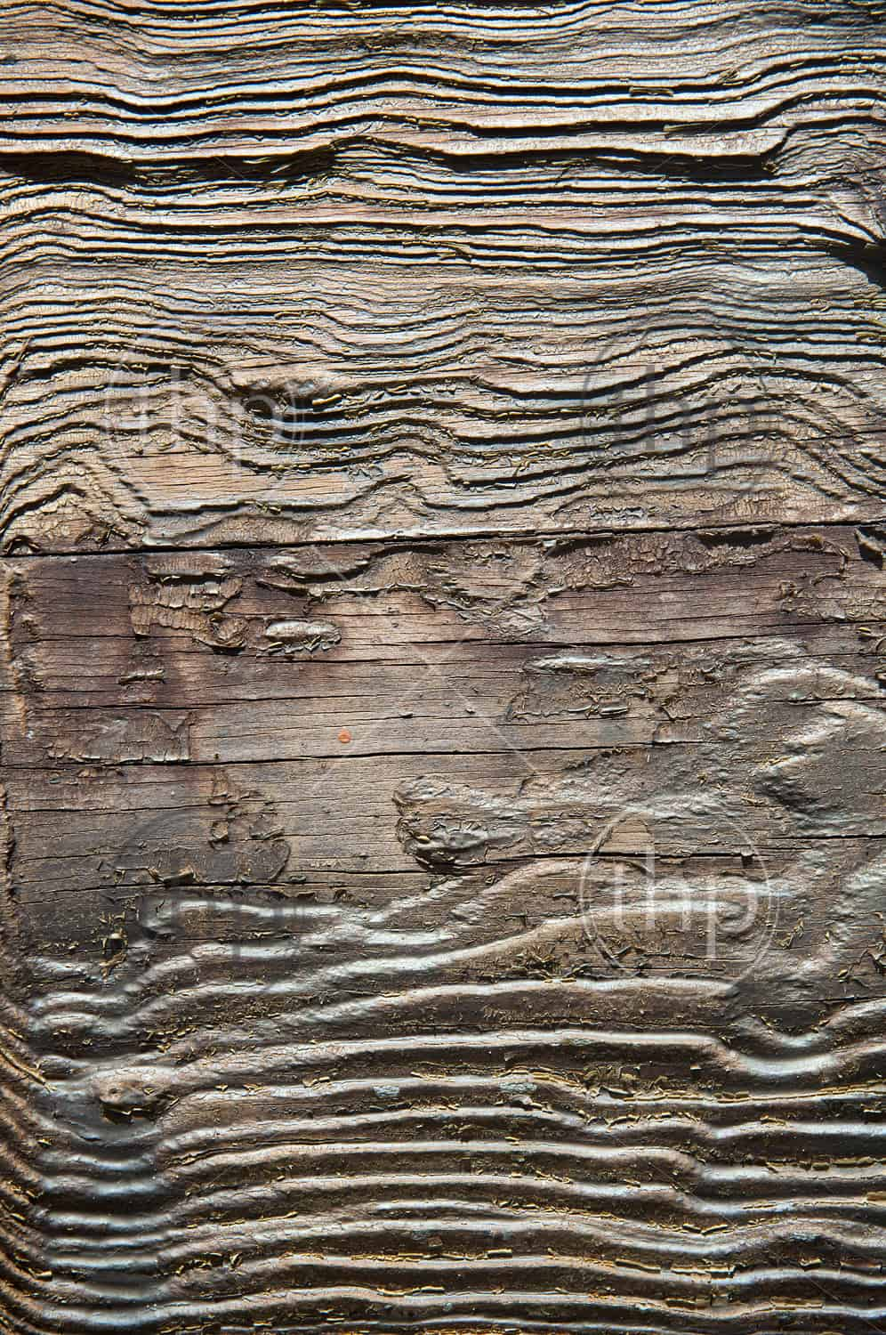 texture of rough weathered wood creates ornate photo. Black Bedroom Furniture Sets. Home Design Ideas