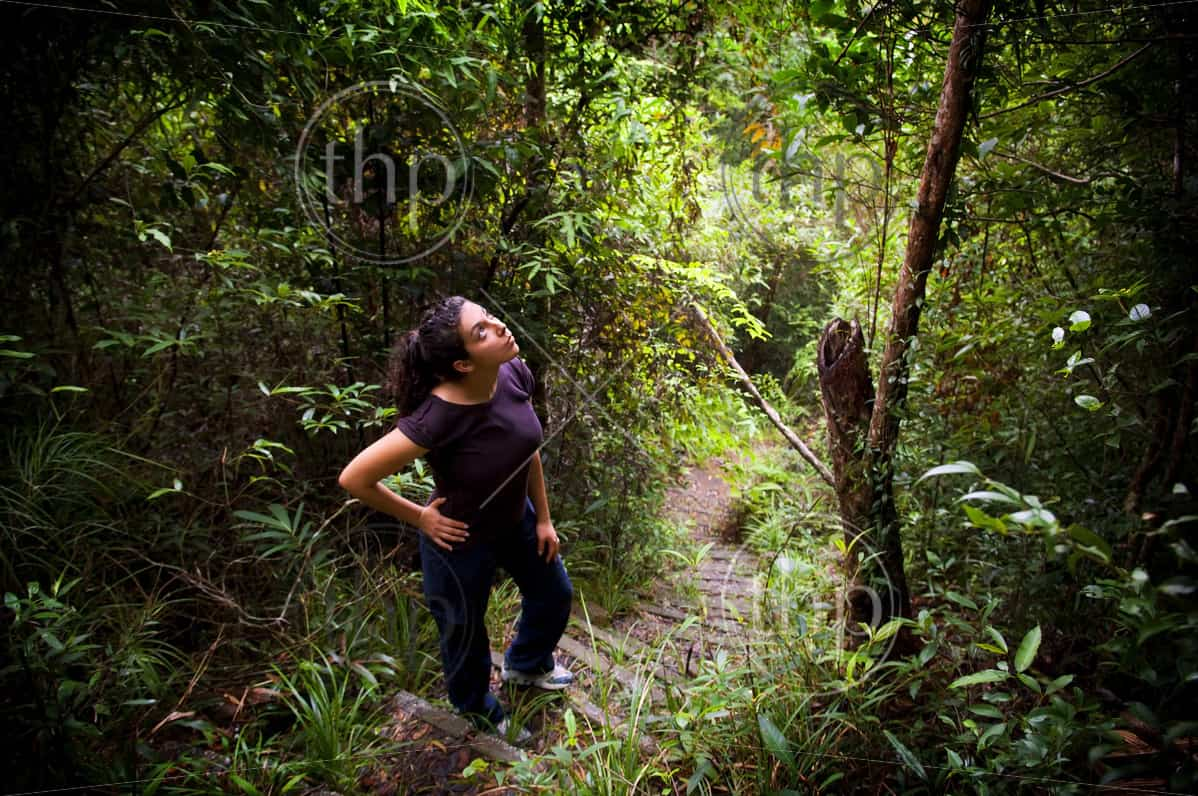 An active young woman hiking in thick jungle