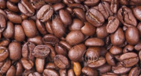 Coffee beans form a background texture