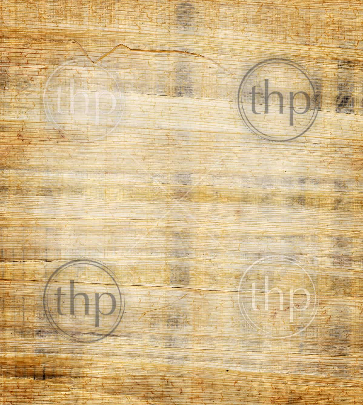 Papyrus paper background texture from Egypt