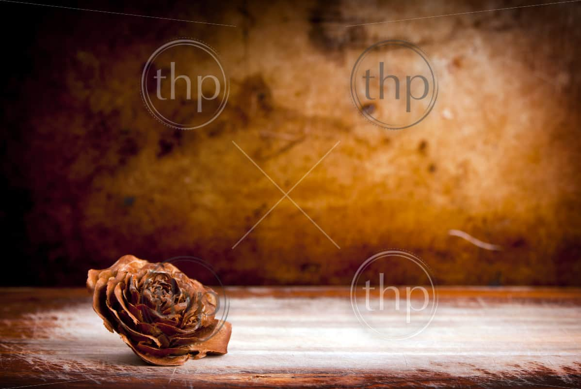 Wooden rose against a vintage grunge background with copy space