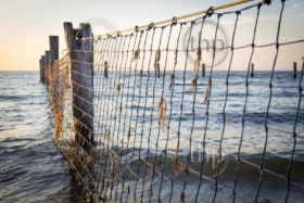 Netting between old wooden posts at the seaside