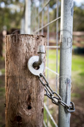 Classic Australian farm gate lock on a wooden post