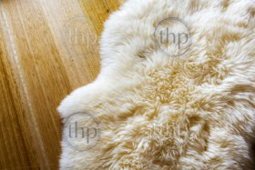 Lambs wool sheepskin on a timber floor