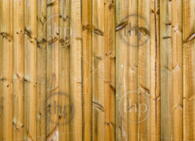 New wood fence in treated pine panels