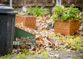 Autumn leaves raked up in the backyard with a bin