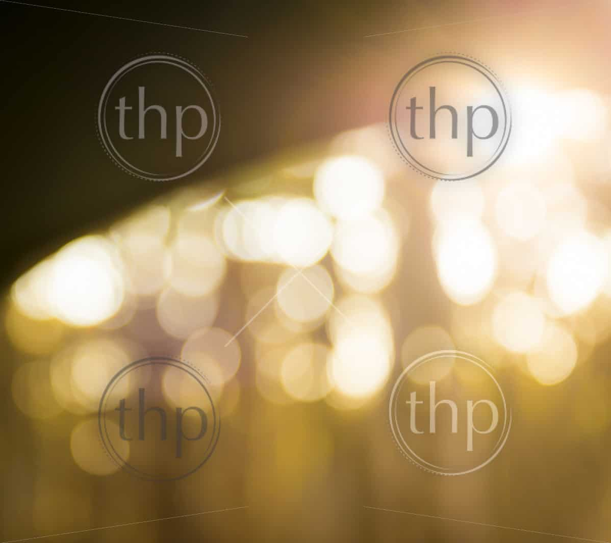 Bokeh background of defocused light through trees with dark curved horizon line