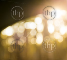 Bokeh background of defocused light through trees with dark curved horizon line