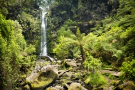 Erskine Falls waterfall in the Otways National Park along the Great Ocean Road, Australia