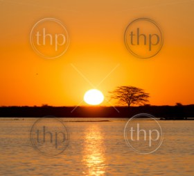 Classic African sunset with huge burning sun over Acacia trees and water in Botswana, Africa