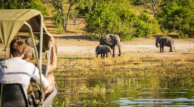 Tourists watching an elephant while on safari in Botswana, Africa