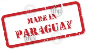 Red rubber stamp vector of Made In Paraguay