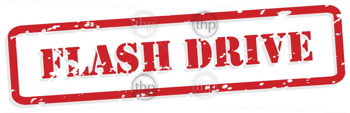Flash drive red rubber stamp in vector format