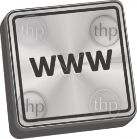 WWW button 3D key in brushed metal vector