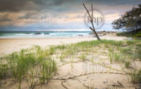 Australian beach sunrise on Deadmans Beach, Stradbroke Island in Queensland