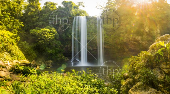 Panorama of Misol Ha waterfall near Palenque in Chiapas, Mexico