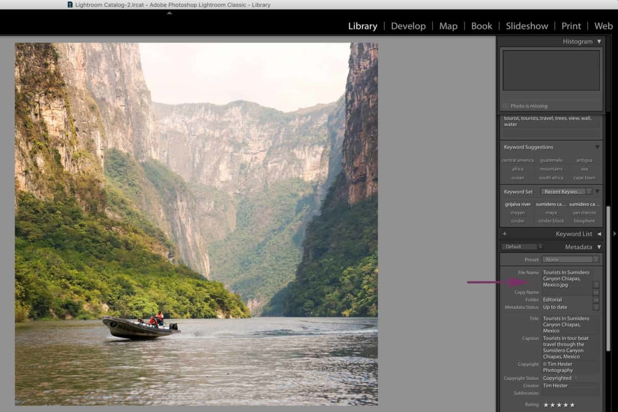 Screenshot of keywording stock images in Adobe Lightroom CC