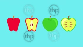 Apple fruit whole, halved and sliced in flat design vector style banner
