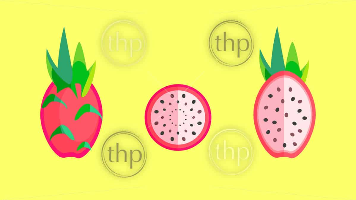 Dragon fruit or pitaya fruit whole, halved and sliced in flat design vector style banner