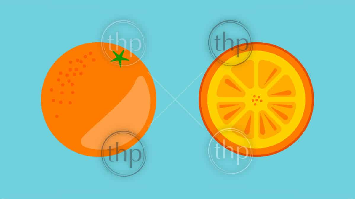 Orange fruit whole and sliced in flat design vector style banner