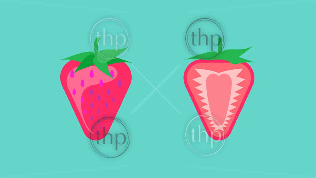 Strawberry whole and sliced in flat design vector style banner