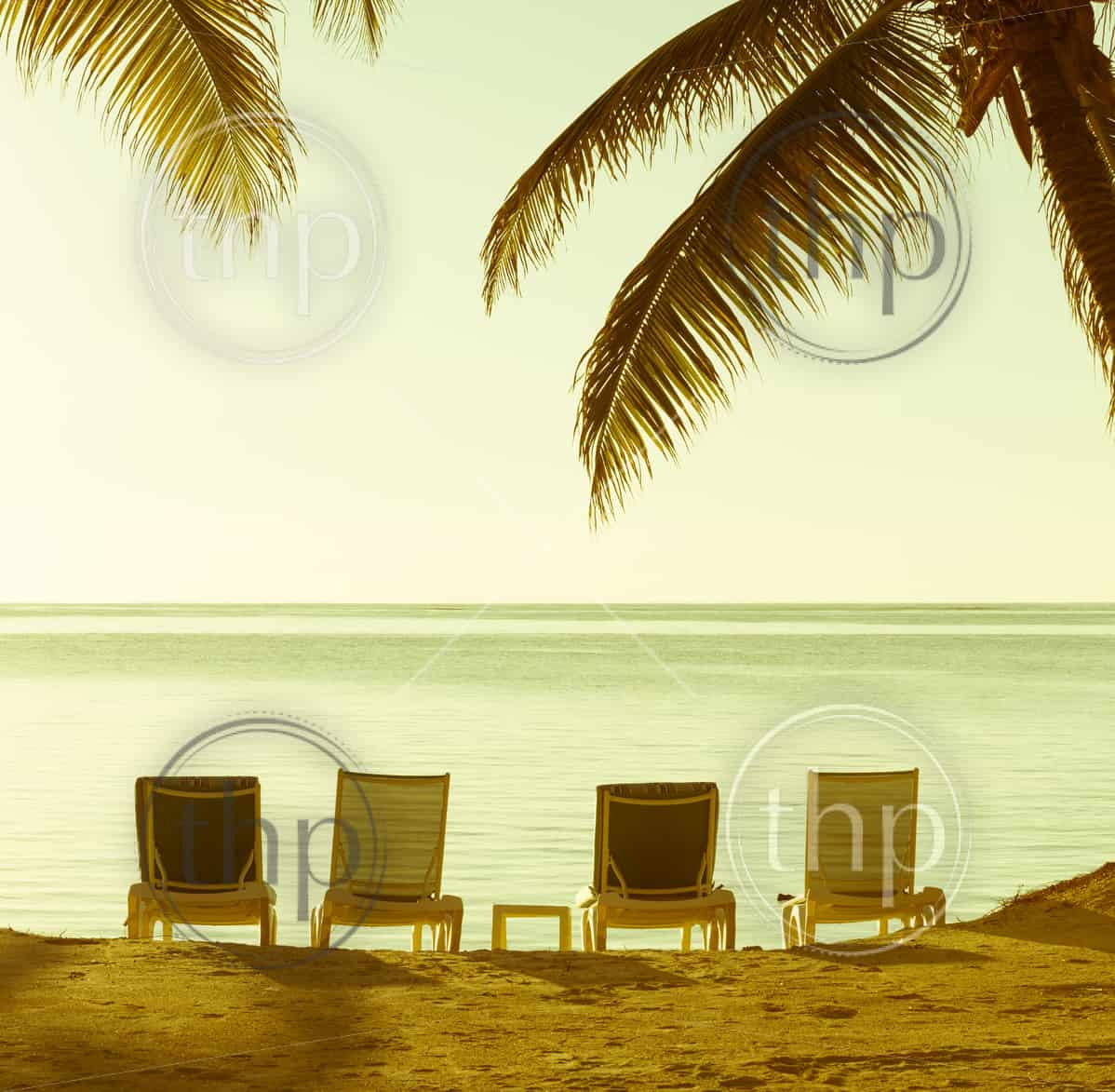 Beach chairs in sand with tropical palm trees as vintage background