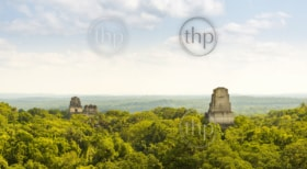 Tikal in Guatemala, an ancient Mayan city in ruins surrounded by jungle
