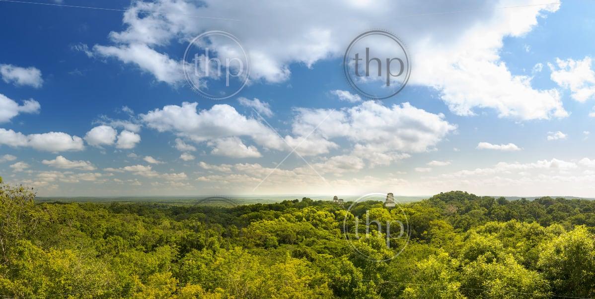 Panorama of the Mayan city of Tikal, Guatemala