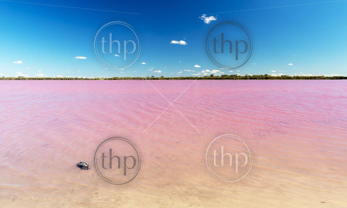 Pink Lake near Dimboola, Victoria in Australia under a bright blue sky