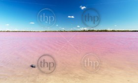 Pink Lake near Dimboola, Victoria in Australia under a bright blue sky