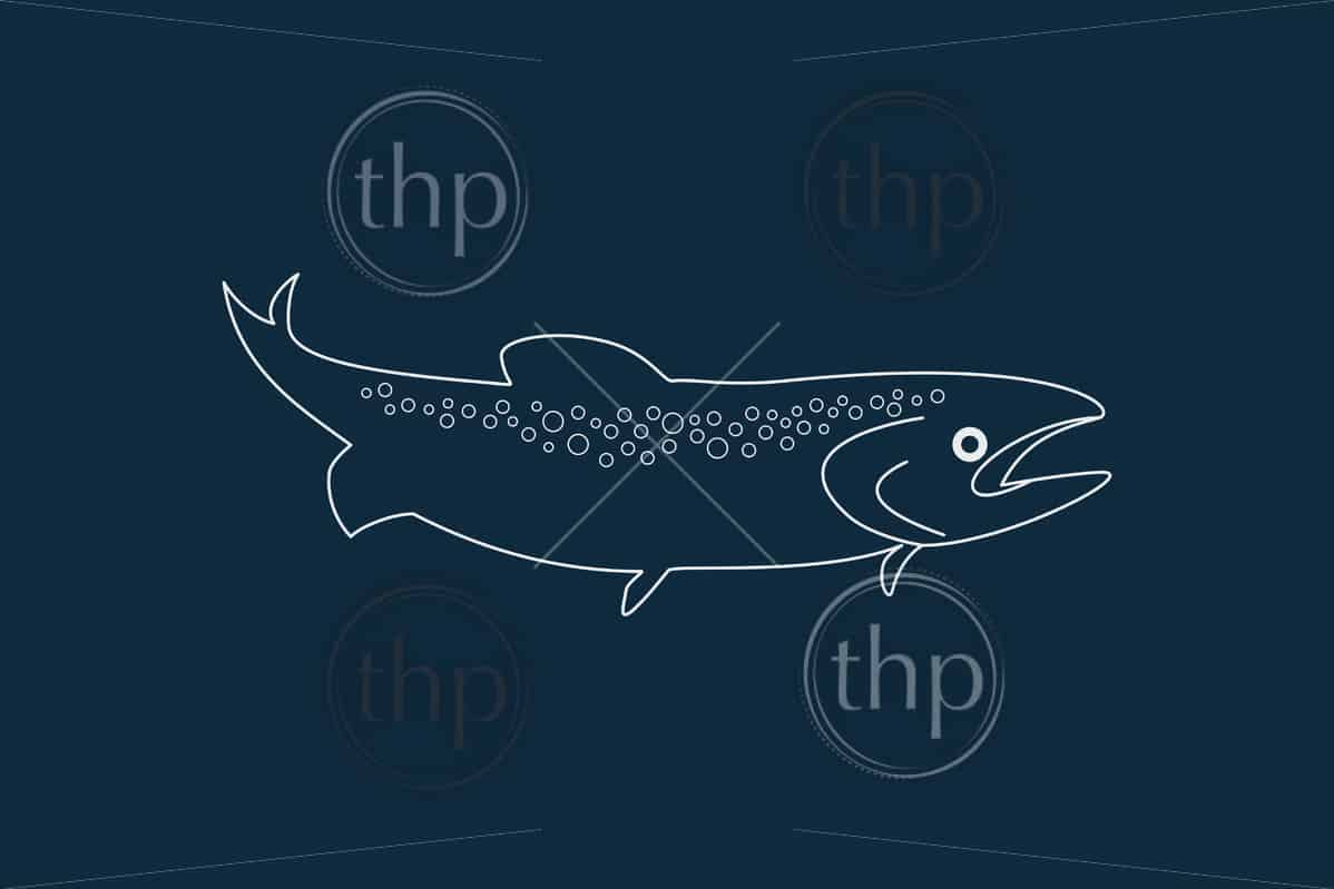 Line drawing vector of a fish on blue