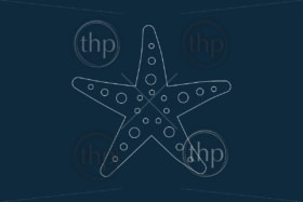 Line drawing vector of a starfish on blue