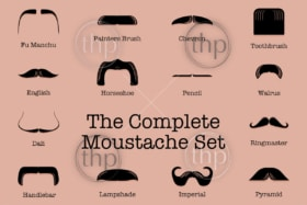 Complete set of classic moustache looks including dali, handlebar, ringmaster and more in vector format