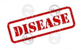 Disease red rubber stamp vector isolated